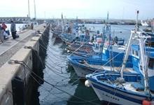 Pesca9Mini