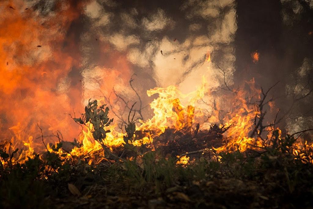 IncendiosGrande