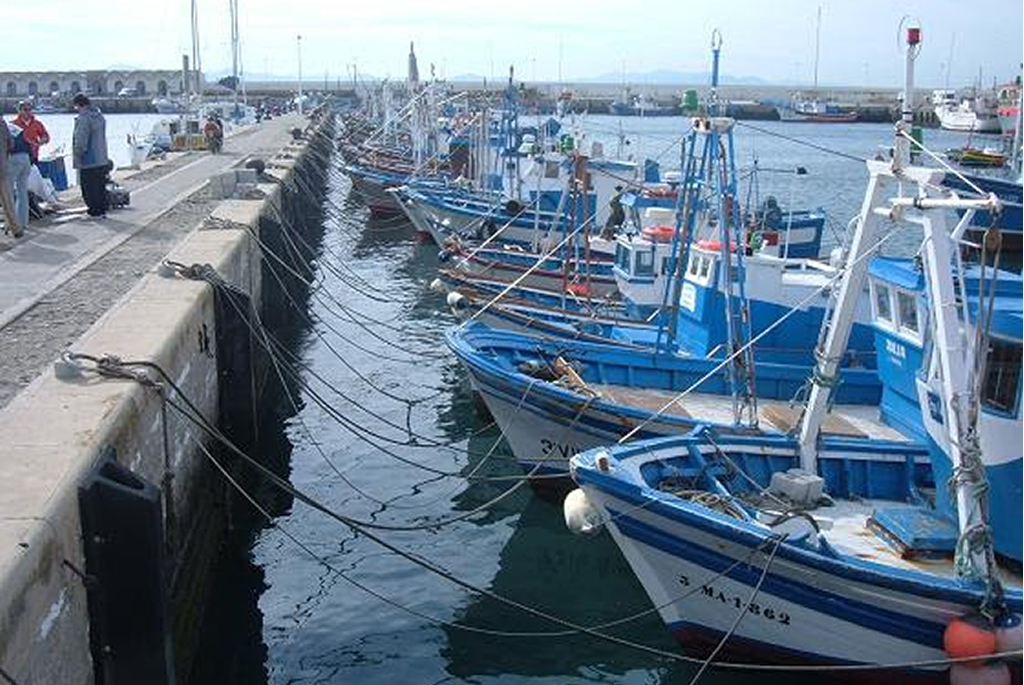Pesca9Grande
