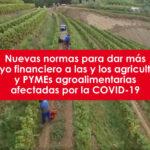 Clara Aguilera – Nuevas normas para dar más apoyo financiero a las y los agricultores y PYMES agroalimentarias afectados por la COVID-19