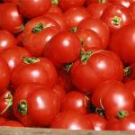 Pregunta parlamentaria sobre la corrección de la ineficacia del sistema de precios de entrada frente a importaciones de tomate marroquí
